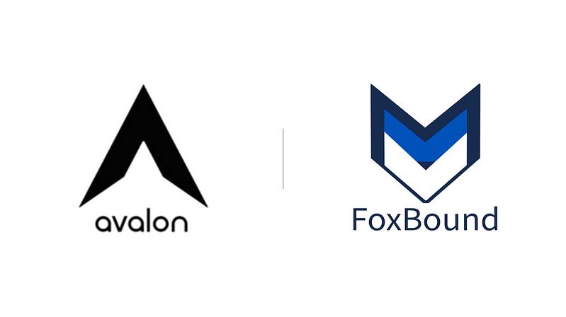 Avalon Labs + FoxBound Case Study